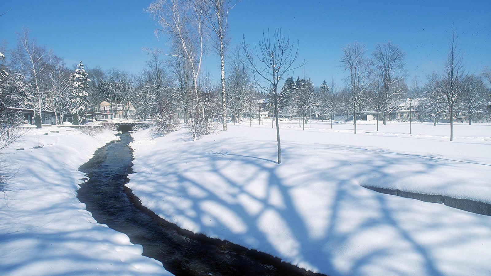 Winterlandschaft in Bad Dürrheim