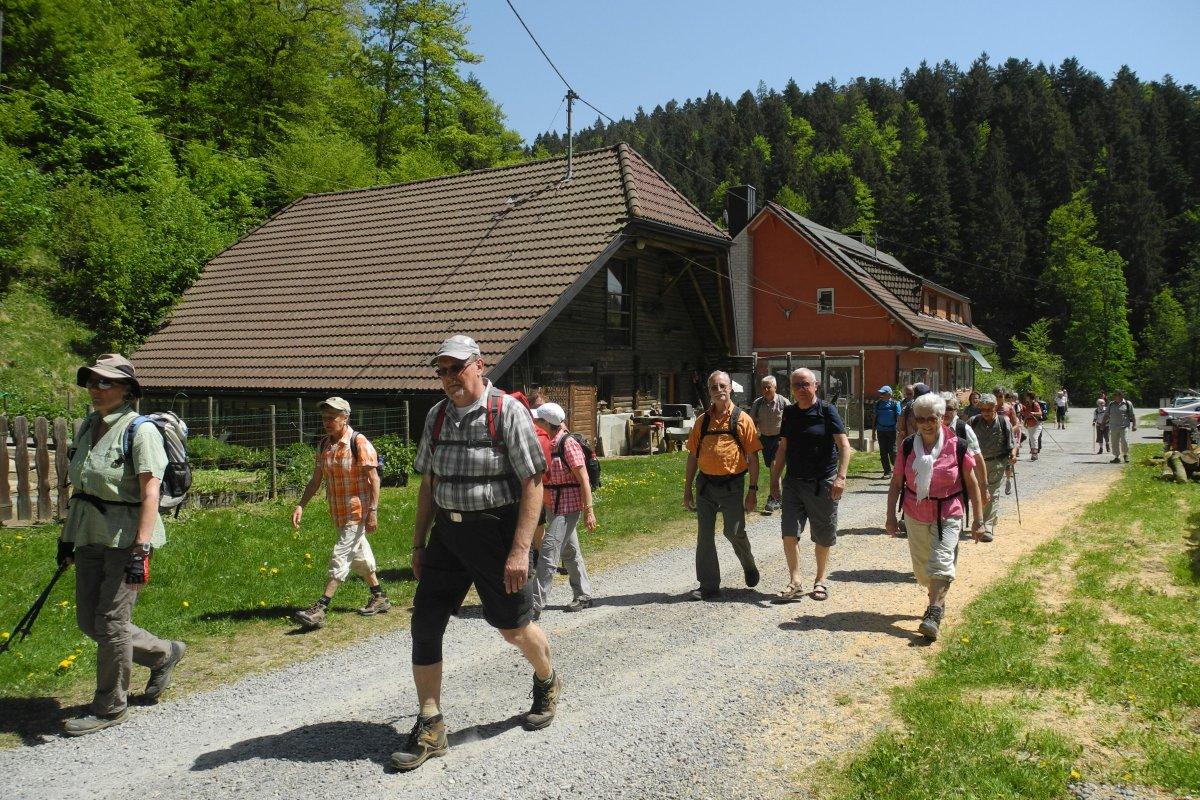 Bei Birkendorf / Südschwarzwald