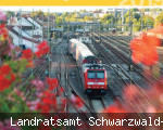 Kreisfahrplan Schwarzwald-Baar-Kreis