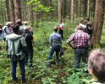 Waldbegehung des Gemeinderates 2021