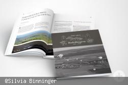 Festschrift 1250 Jahre Baldingen