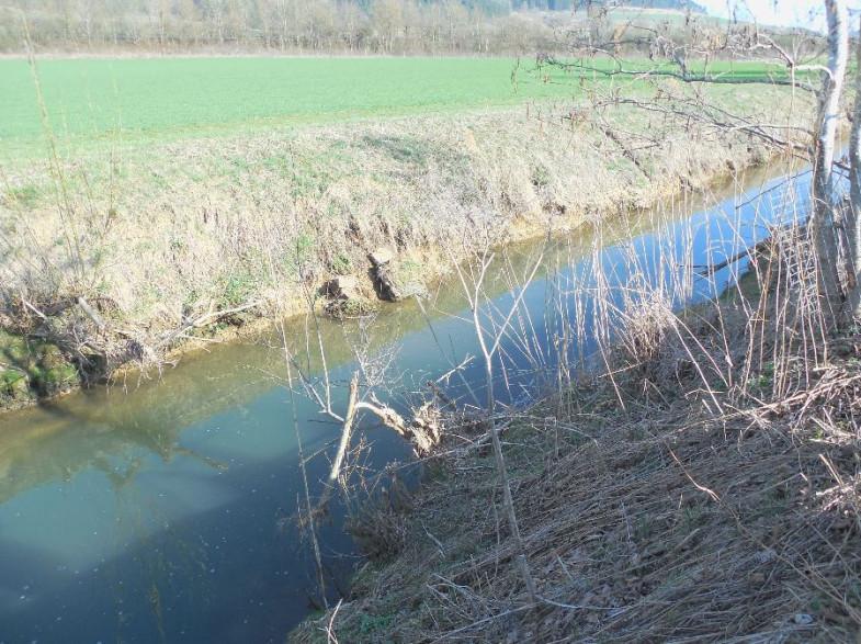 Vorher: kanalartig ausgebaute Kötach
